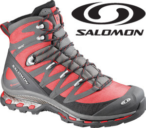 Salomon Cosmic 4D GTX